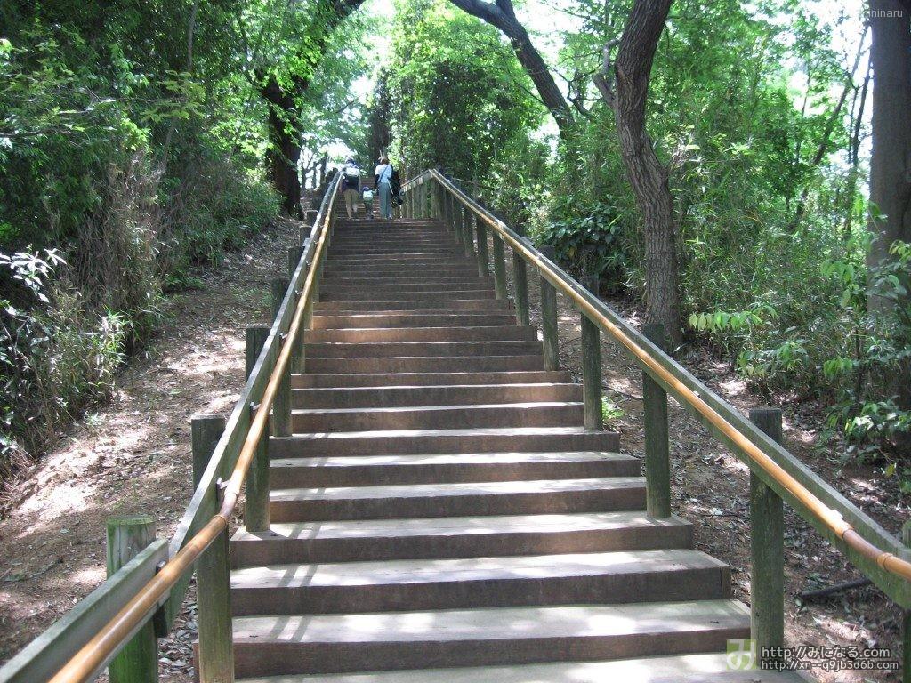 生田緑地ばら苑の階段