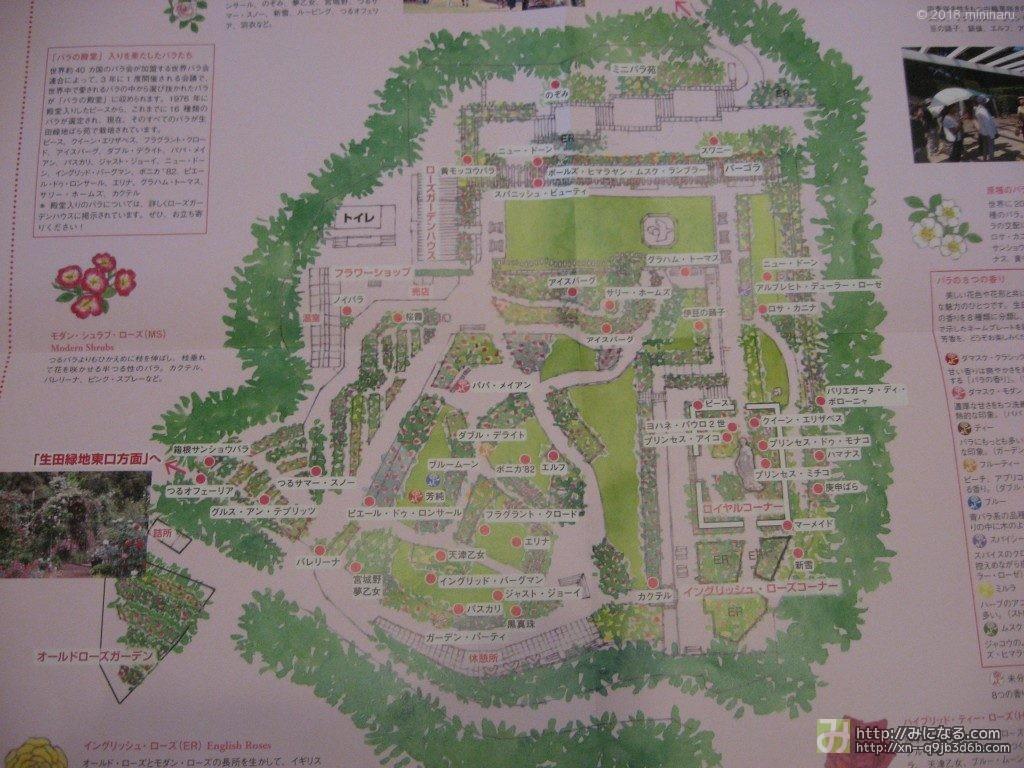 生田緑地ばら苑パンフレット2