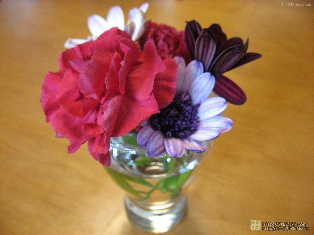コップに生けた花